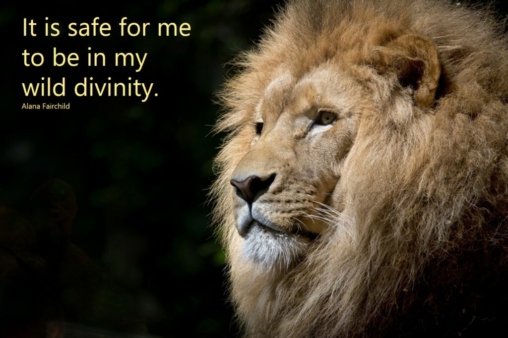 it is safe to be in my wild divinity